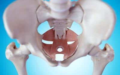 Fysiotherapie bij bekkenklachten uitstralend naar het been